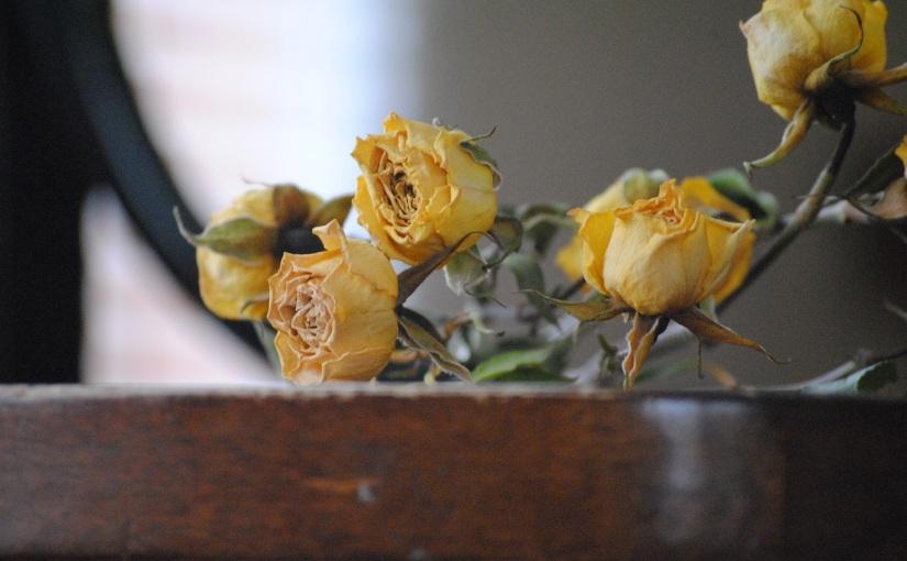 My wedding roses